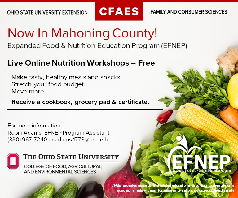 Vegetables with EFNEP logo announce virtual EFNEP classes